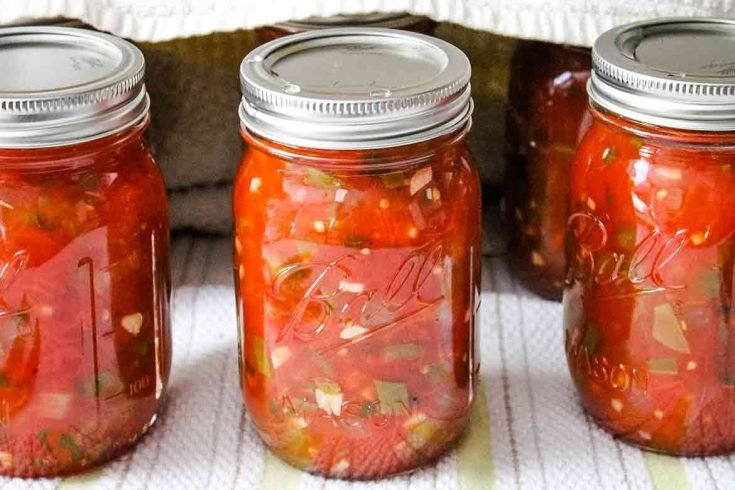 Homemade Salsa for Canning