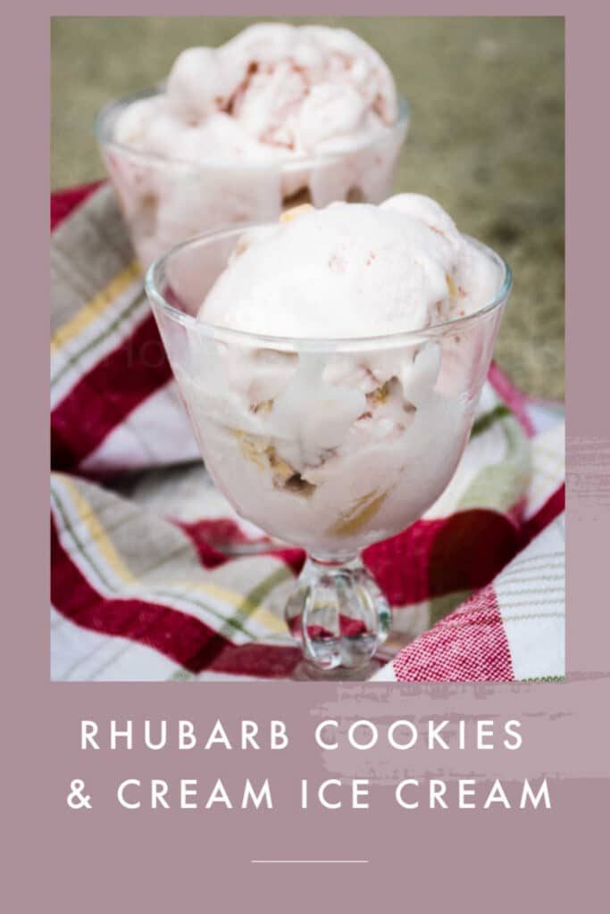 PINNABLE IMAGE OF RHUBARB ICEI CREAM