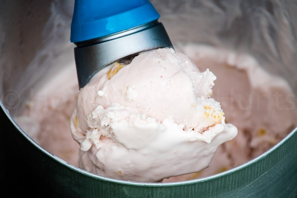 Rhubarb Ice Cream with Vanilla Cream Cookies
