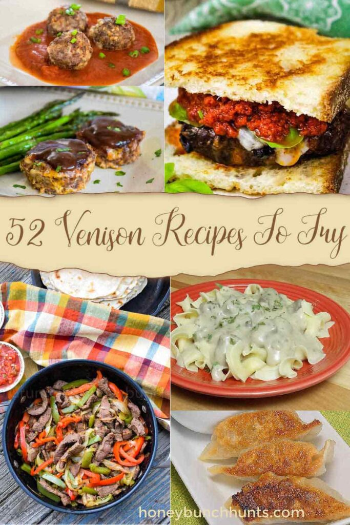 Venison Recipes Round Up Pin